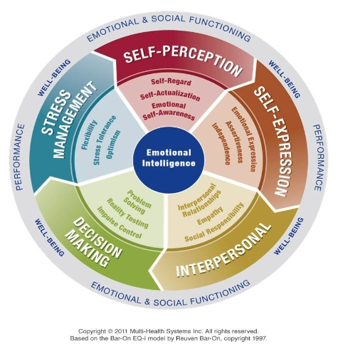 EQ-i2.0 Emotional Intelligence Model_
